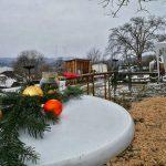 3.12.2017: Besuch Weihnachtsflohmarkt Bogenparcours Hohenlohe