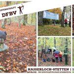 Regionalmeisterschaft Süd 3D Bogenschießen (DFBV)