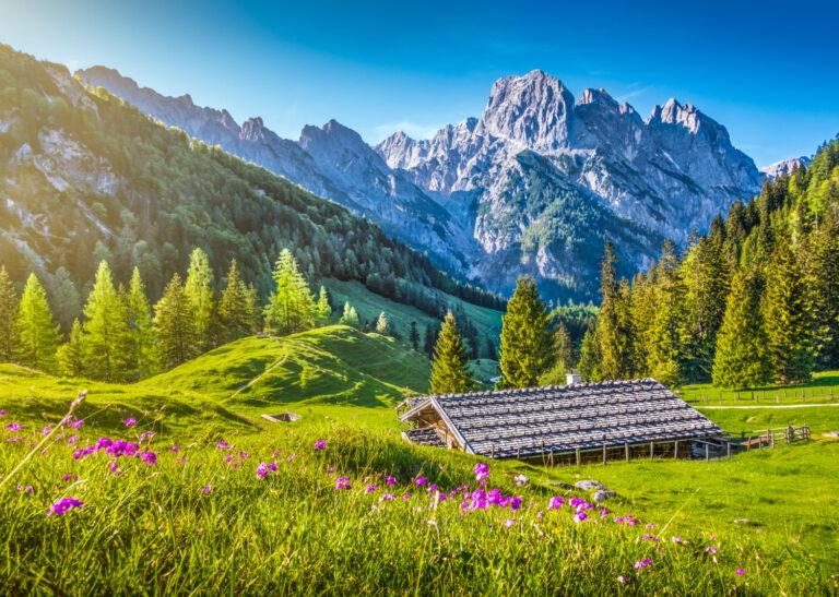 Landschaftsbild von den Alpen. Berge und Hütte mit Wald.