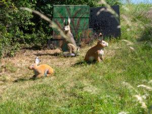 Gruppe von Hasen mit Backstop auf einem Bogenparcours
