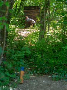 Wald mit Ziel auf einem Bogenparcours mit Abschusspflock